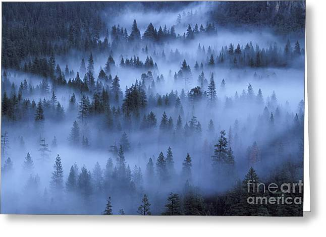 Greeting Card featuring the photograph Valley In Fog by Stan and Anne Foster