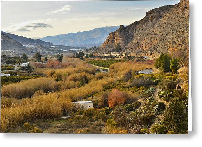Valley Of Andalusia Greeting Card