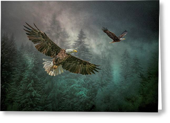 Valley Of The Eagles. Greeting Card