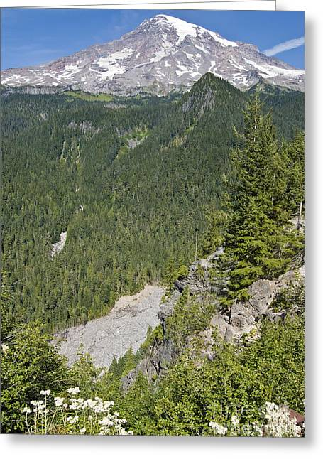 Valley View Of Mt. Rainier Greeting Card by Larry Keahey