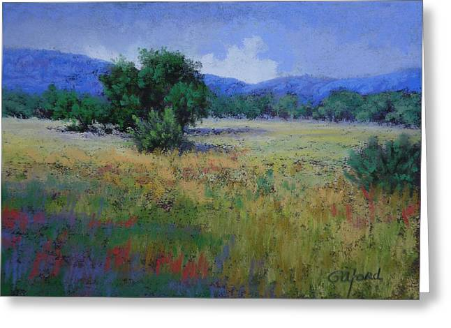 Valley View Greeting Card by Paula Ann Ford