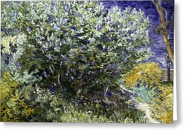 Van Gogh: Lilacs, 19th C Greeting Card