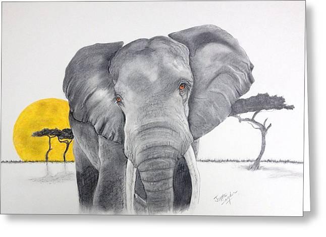Vanishing Elephant Greeting Card