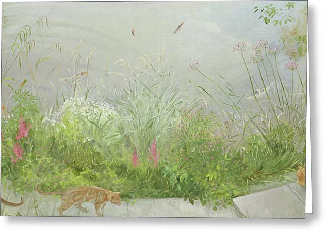 Vantage Point Greeting Card by Timothy Easton