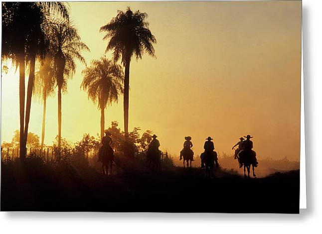 Paraguay Greeting Cards - Vaqueros Return After Putting Cattle Greeting Card by O. Louis Mazzatenta
