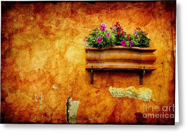 Vase Greeting Card by Silvia Ganora