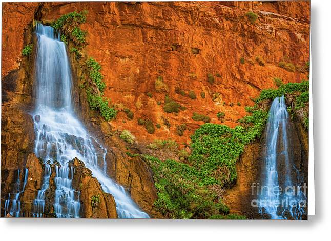Vaseys Paradise Twin Falls Greeting Card