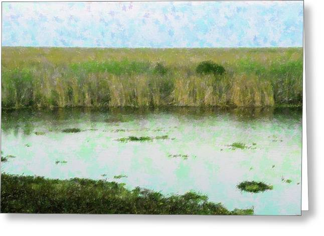 Vast Everglades Greeting Card by Florene Welebny