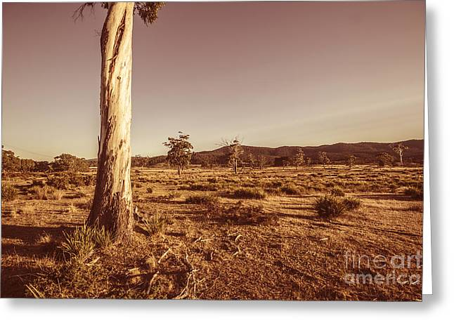 Vast Pastoral Australian Countryside  Greeting Card by Jorgo Photography - Wall Art Gallery