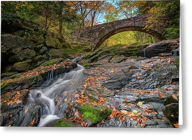 Vaughan Brook And Arch Bridge Greeting Card