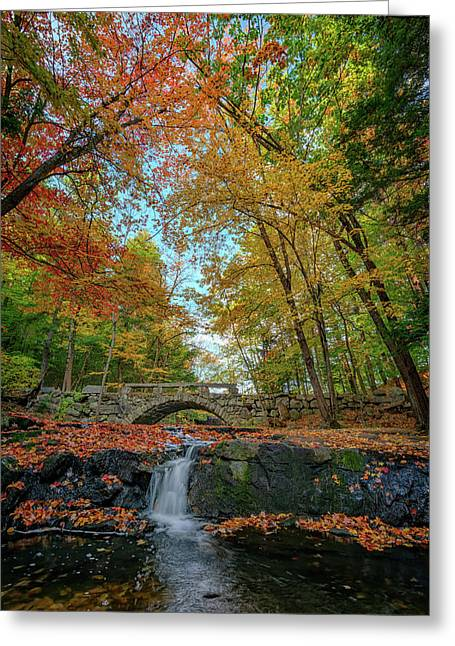 Vaughan Brook Greeting Card