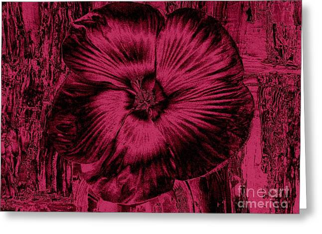 Velvet Hibiscus Greeting Card by Marsha Heiken