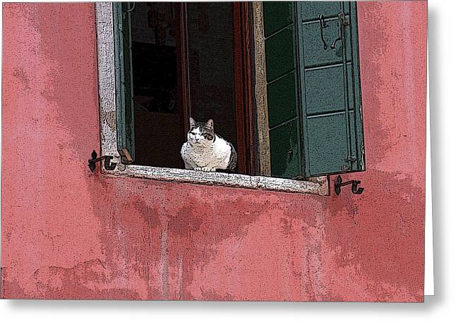 Venetian Cat In Window Greeting Card