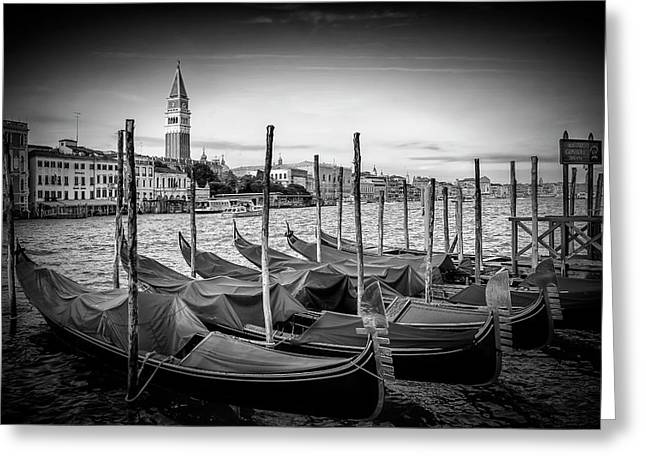 Venice Grand Canal And St Mark's Campanile - Monochrome Greeting Card by Melanie Viola