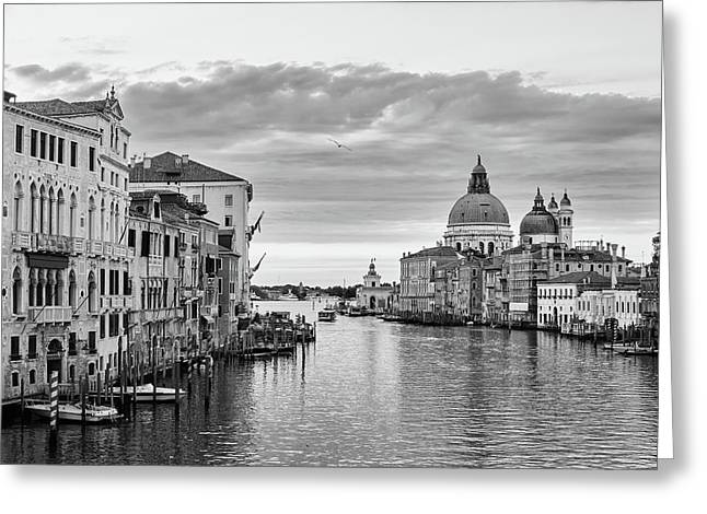 Venice Morning Greeting Card by Richard Goodrich