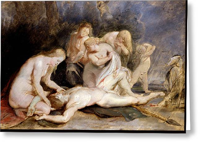Venus Mourning Adonis Greeting Card by Peter Paul Rubens