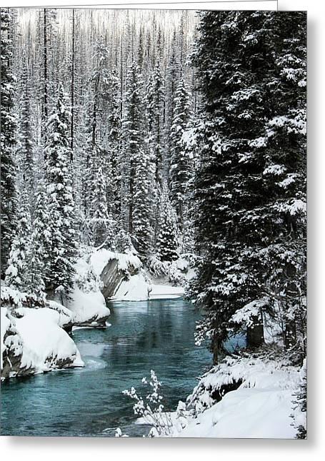 Verdant Creek - Winter 1 Greeting Card by Stuart Turnbull
