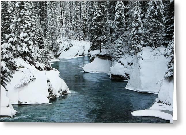 Verdant Creek - Winter 6 Greeting Card by Stuart Turnbull