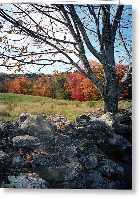 Vermont Autumn Greeting Card