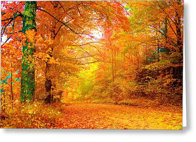 Vermont Autumn Greeting Card by Vicky Brago-Mitchell