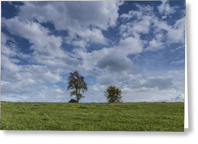 Vermont Hay Field Grass Double Trees Clouds Greeting Card
