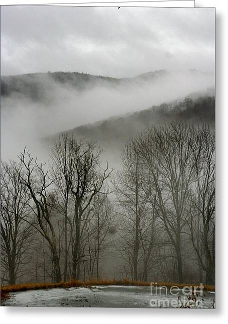 Vermont Mist Greeting Card by Paula Deutz