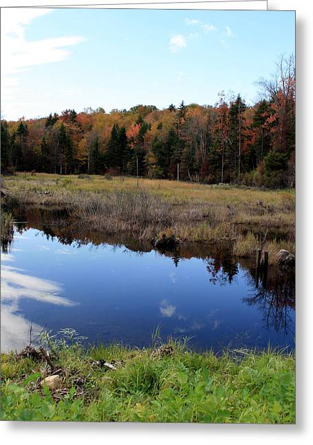 Vermont Reflections 1 Greeting Card by George Jones