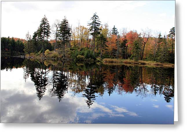 Vermont Reflections 2 Greeting Card by George Jones