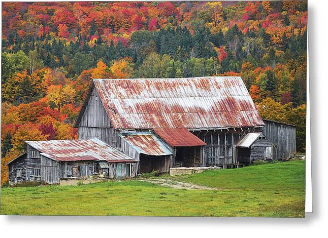 Vermont Greeting Card