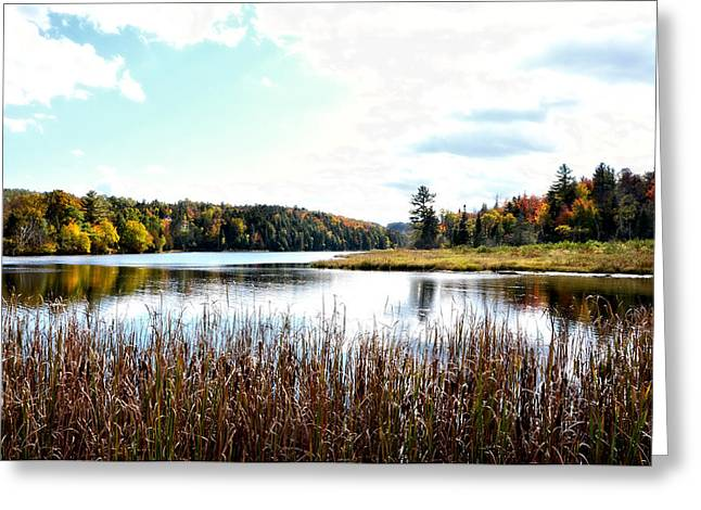Vermont Scenery Greeting Card