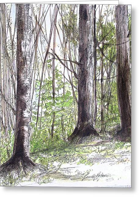 Vermont Woods Greeting Card