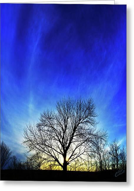 Vernal Sunset Greeting Card