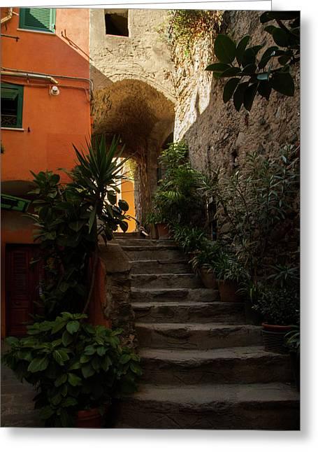 Vernazza Stairway 1 Greeting Card by Art Ferrier