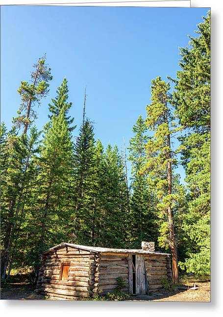 Vertical Abandoned Cabin Greeting Card