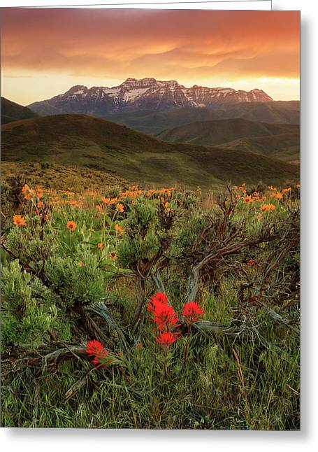 Vertical Timp With Wildflowers Greeting Card