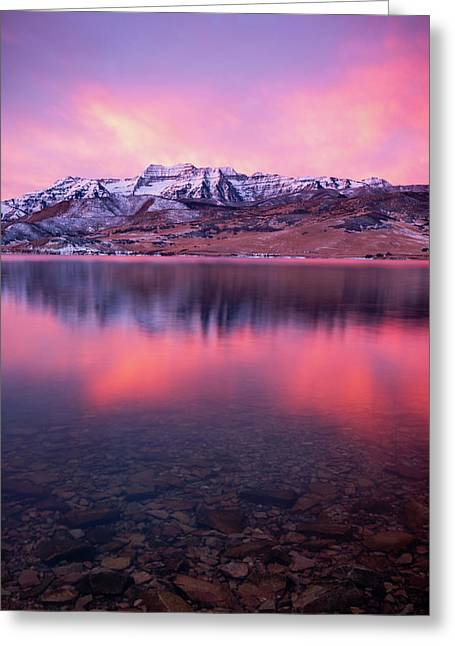 Vertical Winter Timp Reflection. Greeting Card