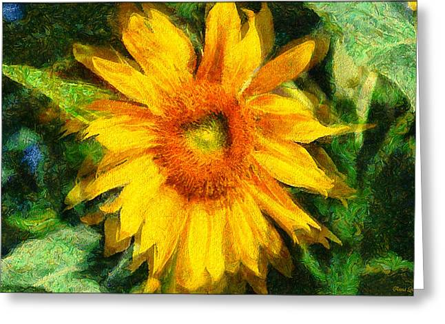 Very Wild Sunflower Greeting Card