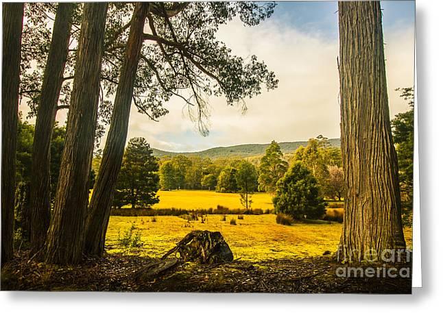 Vibrant Autumn Hillside Greeting Card