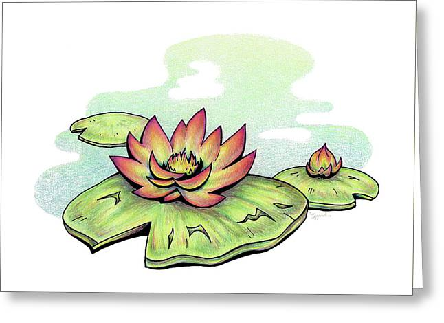 Vibrant Flower 2 Water Lily Greeting Card