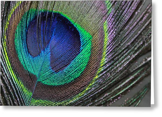 Vibrant Green Feather Greeting Card