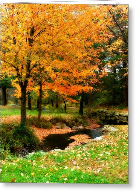 Vibrant October Greeting Card