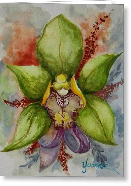 Vibrant Orchid Greeting Card by Yvonne Kinney
