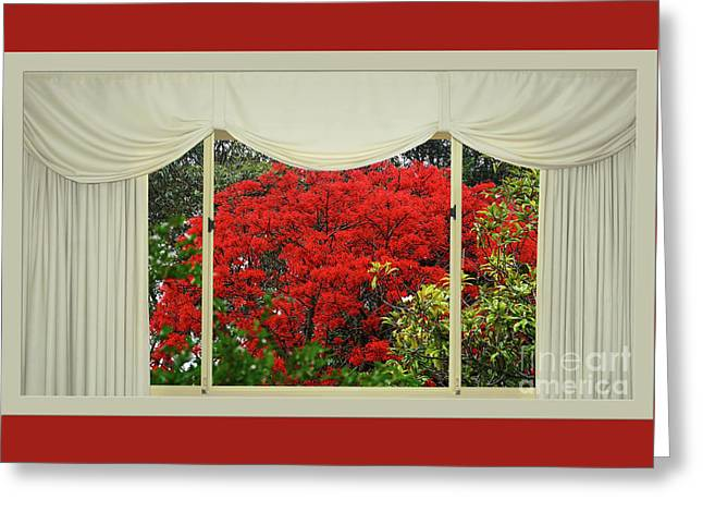 Vibrant Red Blossoms Window View By Kaye Menner Greeting Card