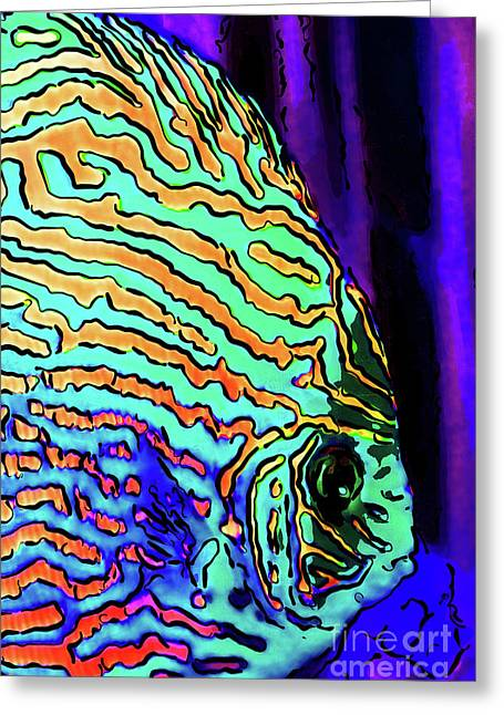 Vibrant Tropical Fish Discus 20170910 Greeting Card