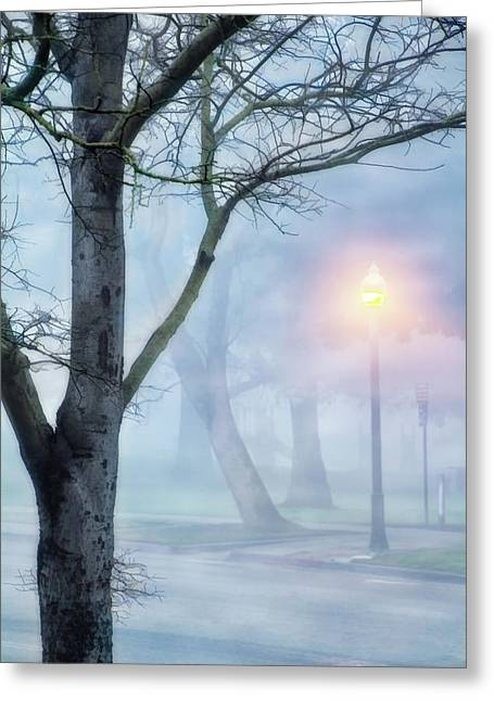 Victory Park In Fog Greeting Card