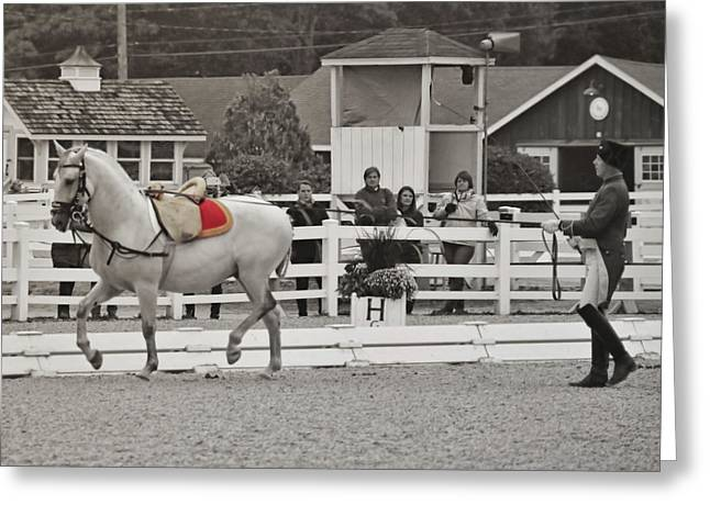 Greeting Card featuring the photograph Vienna Schooling by Dressage Design