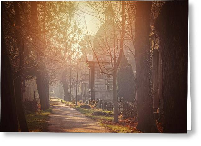 Vienna Zentralfriedhof In Winter  Greeting Card by Carol Japp