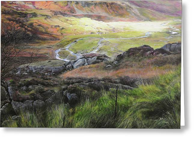 View Down The Valley In Snowdonia. Greeting Card by Harry Robertson