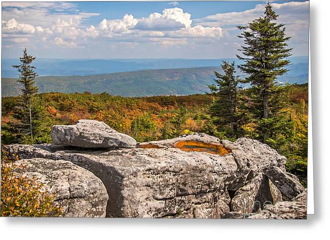 View From Bear Rocks 4173c Greeting Card