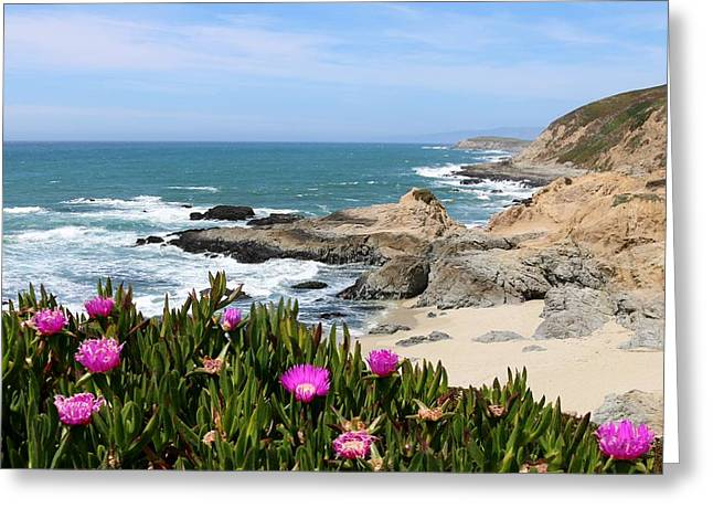 View From Bodega Head In Bodega Bay Ca - 3 Greeting Card